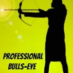 Professional Bulls-eye by Maggie Mongan of Brilliant Breakthroughs, Inc.